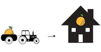 <h3>REDUCIR HUELLA CO2</h3><br>La fruta sólo se recolecta bajo pedido en el momento del envío. No madura en cámaras. Viaja directamente del árbol a tu casa.