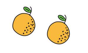 Durante los primeros años, mientras tu árbol crezca y consiga producir su propia fruta, te reservaremos la producción de uno de nuestros árboles mayores. De esta manera podrás recibir fruta desde la primera temporada.