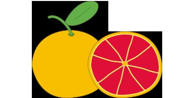 Grapefruits<br>(1kg, ~ 3-5 pieces)