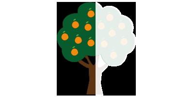 Árbol de naranjas<br>(mitad de cosecha)