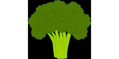 Brócolis<br> (1kg, ~1 unidad)